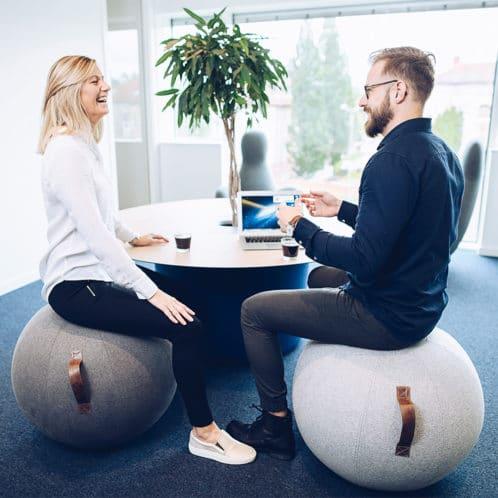 Balansboll Desing - Jobout | REHABgrossisten
